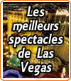 Les meilleurs spectacles de Las Vegas à ne pas louper.