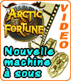 Arctic Fortune, machine à sous de Microgaming.