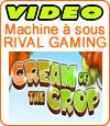 Cream of the Crop, démo et notre avis sur ce slot de marque Rival.