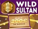 Wild Sultan Casino.